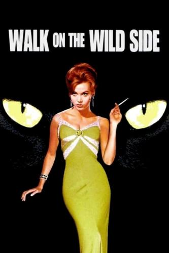Walk On The Wild Side (1962) [720p] [BluRay] [YTS Mx]